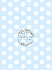 Shabby chic large blue polka dots photographers backdrop