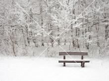 Snow Scene 002