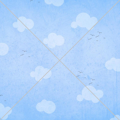 Beautiful shabby cloud photography backdrop