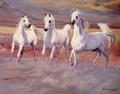 Judi Kent-Pyrah - Desert Treasures