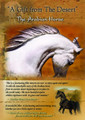 A Gift from The Desert: The Arabian Horse