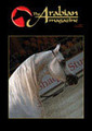 The Arabian Magazine Issue 17 - November 2006