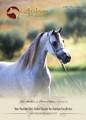The Arabian Magazine Issue 98 - December 2015 The Paris Edition