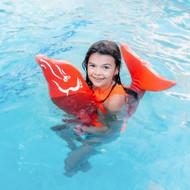 Flipper Dipper™ Dolphin