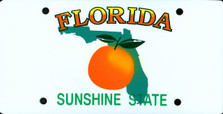 Florida State Auto Plate