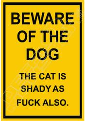 Beware of Dog cat shady