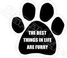 The Best Things In Life are Furry