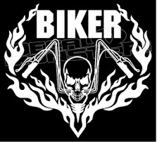Behind Bars Bike Flames Decal Sticker