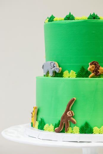 Jungle Animal Cookie Cake