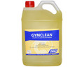Gym Clean Floor Cleaner