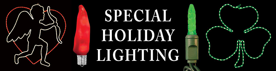 special-holiday-lighting-banner-2015.jpg