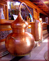 80 Gallon or 300 Liter Alembic copper still