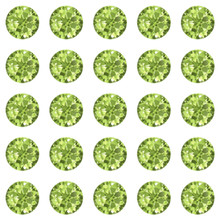 Peridot 30ss Swarovski Diamonds