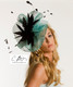 Turquoise with Black feathers