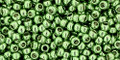 Toho Beads 11/0 Round #364 Permanent Finish Galvanized Sea Foam 20g