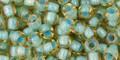 Toho Beads 6/0 Round #29 Rainbow Light Topaz Sea Foam Lined 50g