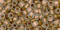 Toho Seed Beads 8/0 Round Frosted Gold Lined Crystal 8 gram tube