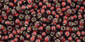 Toho Seed Beads 11/0 Round Silver Lined Garnet 8 gram tube
