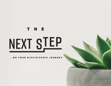 The Next Step (April 22  - May 20,  2017)