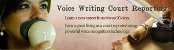 Voice Writing Course