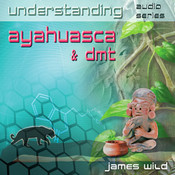 Understanding Ayahuasca and DMT CD