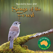 Songs of the Forest CD