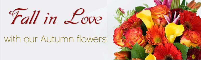 fall-in-love-banner.jpg