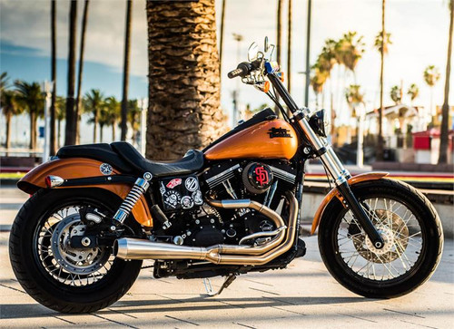 Bassani Road Rage Type III Stainless Dyna Side tree