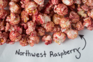 Northwest Raspberry