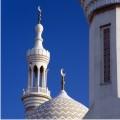 Origins of Islam (Video DVD)
