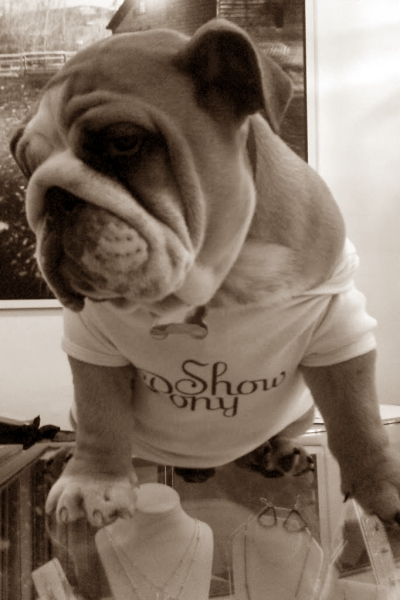 showpony-mascot-pushkin-sepia.jpg