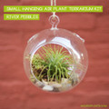 Air Plant Terrarium Globe Kit - Small