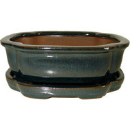 "6"" Pot & Tray (L-GAS-069S-14)"