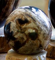 "4"" Petrified Wood Sphere"