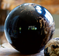 "8"" Petrified Wood Sphere"