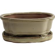 """6"""" Pot & Tray (614-S)"""