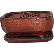 """6"""" Pot & Fixed Tray (605-SA)"""