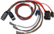 Infinity-6/8h Mini-Harness Pre-wired (Single wideband and AEMnet)