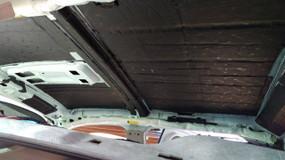 Damplifier Pro Roof