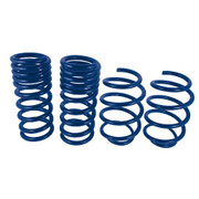 2015 MUSTANG GT COUPE TRACK LOWERING SPRINGS