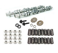 JDM Engineering Ford Lightning/Harley F-150 5.4 2V Camshaft Upgrade