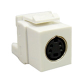 MODULE, S-VIDEO IDC, WHITE