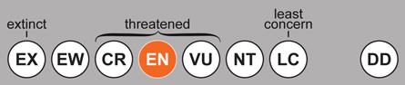 iucn-endangered-sm.jpg