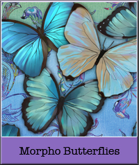 morpho-butterflies.jpg