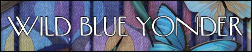 wild-blue-yonder-510x105.jpg