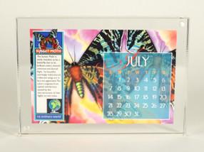 """Luxe Lucite 5x7"""" calendar frame"""