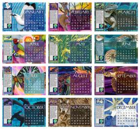 2013 Calendar Refill