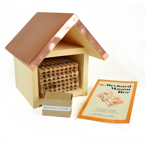 Mason Bee Kit - Small