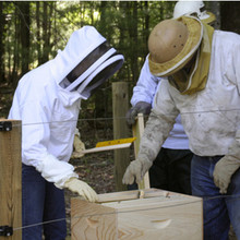 Starting Right with Bees  -  January 12, 2014