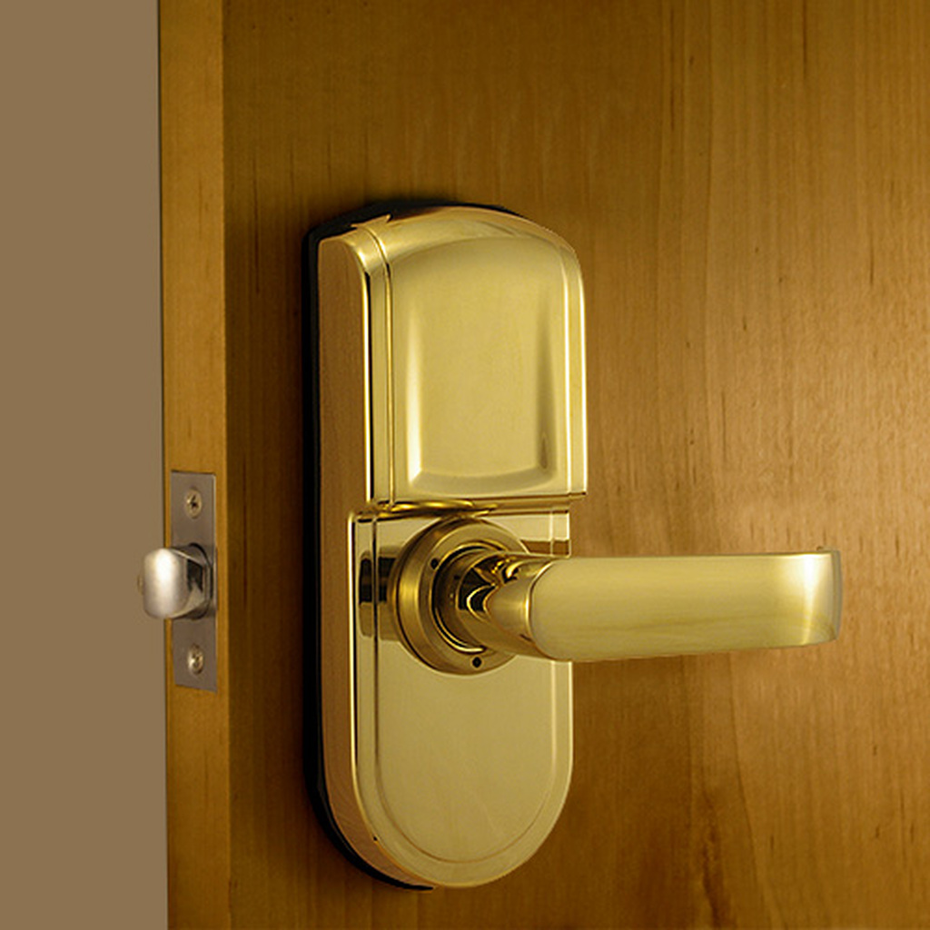 Polished Brass Back Lock Body